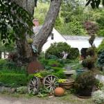 Kentford Farm Gallery